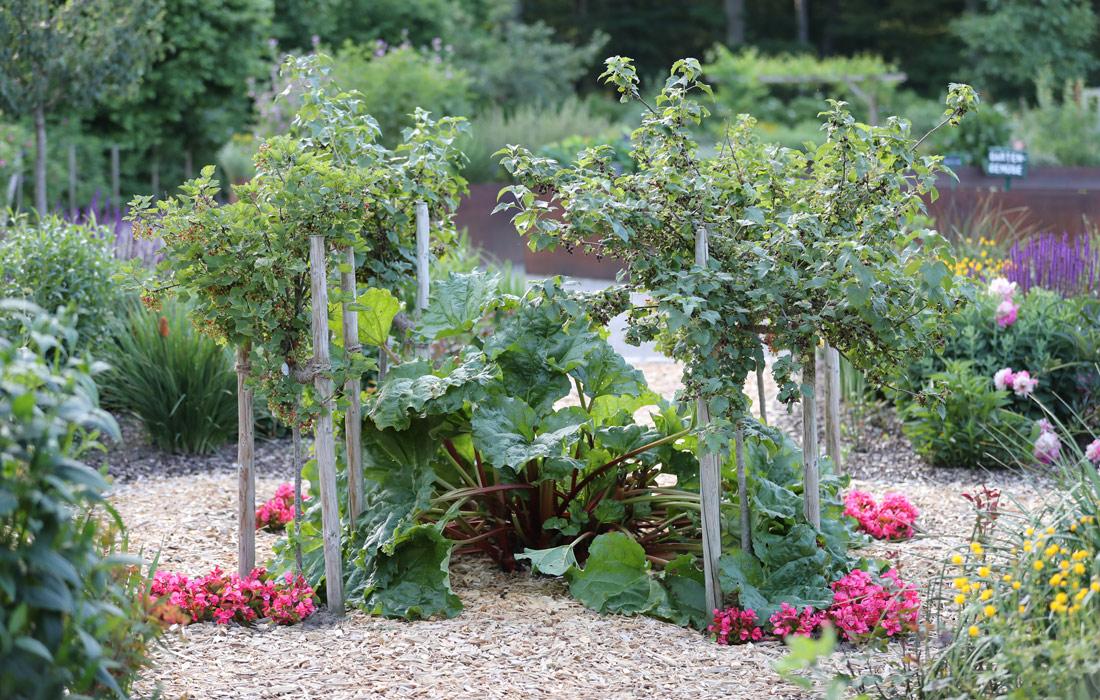 Beetbepflanzung Bauerngarten