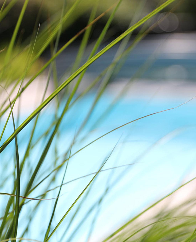 Swimming-Pool im eigenen Poolgarten